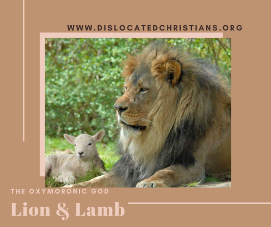 Lion and lamb sat together Oxymoronic God series Questions about God