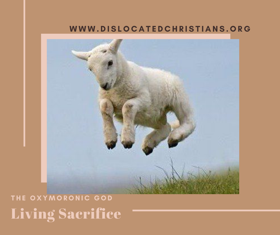 Leaping lamb in the air Christ as living sacrifice Oxymoronic God series
